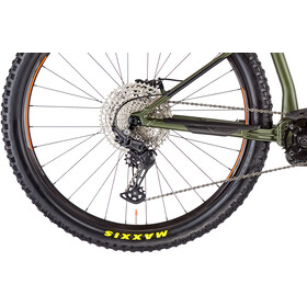 Orbea Wild HT 30 green/black